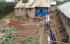 Young Life's Children's Home in Ruiru: Water, Sanitation and Irrigation